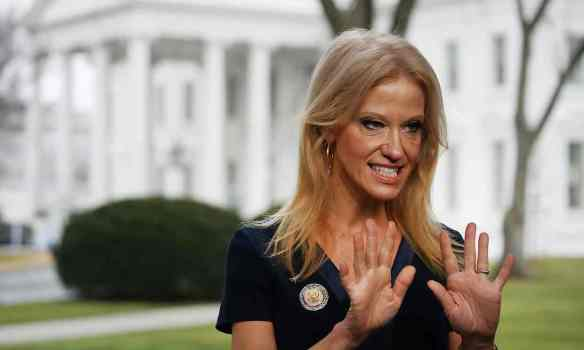Kellyanne Conway had already faced derision for her claim that the White House was offering 'alternative facts'. Photograph: Mark Wilson/Getty Images
